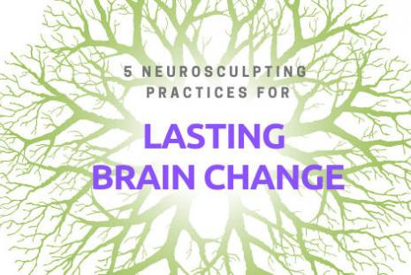 5 Neurosculpting Practices for Lasting Brain Change